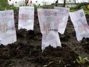 земля-гроші